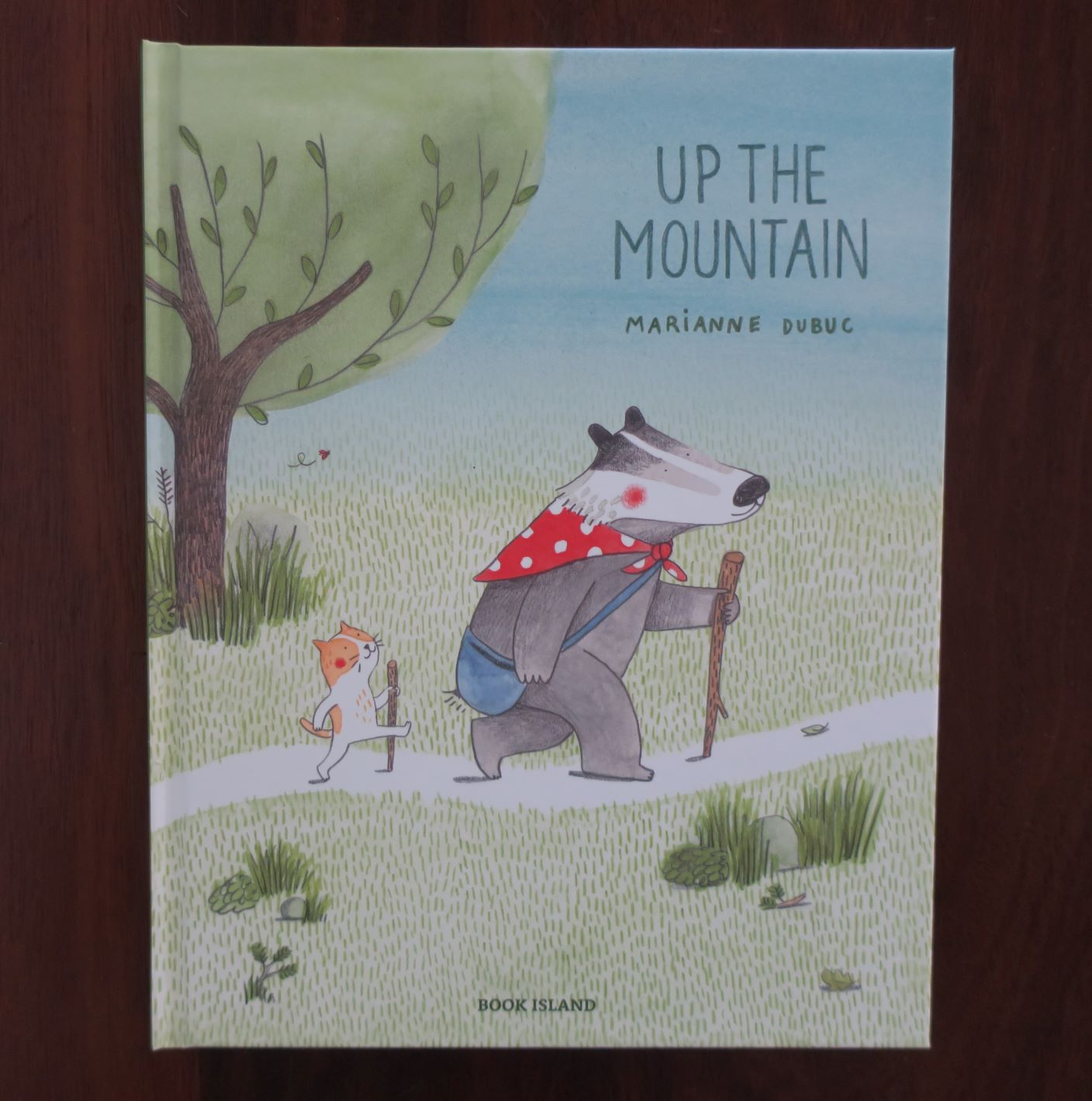 Up the Mountain by Marianne Dubuc (Book Island, 2018)